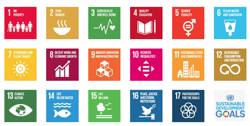 Sustainable development goals, social impact metrics