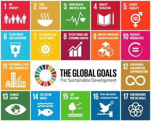 measuring sdgs - indicators, trackers and methodology