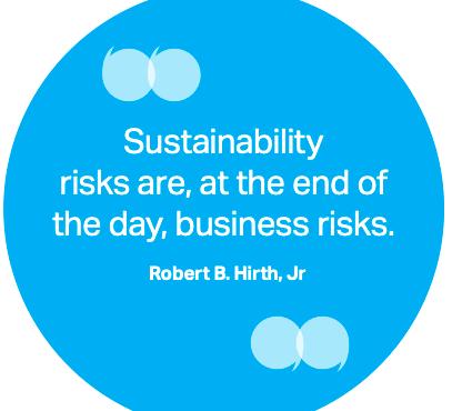 Sustainability Risk