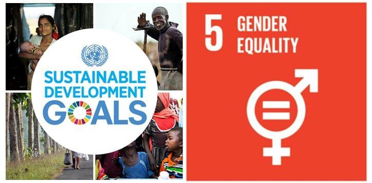 impact metrics gender lens investing sdg 5