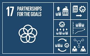 sdg 17 partnerships for the goals
