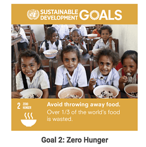 sdg goal 2 hunger - small businesses working towards sustainable development goals