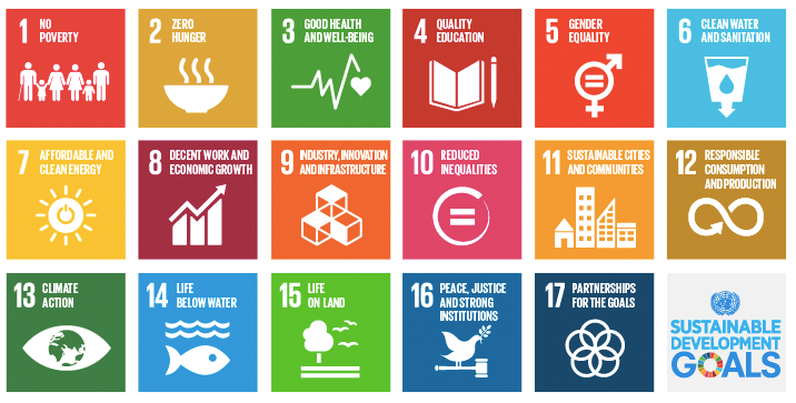 sustainable development goal impact